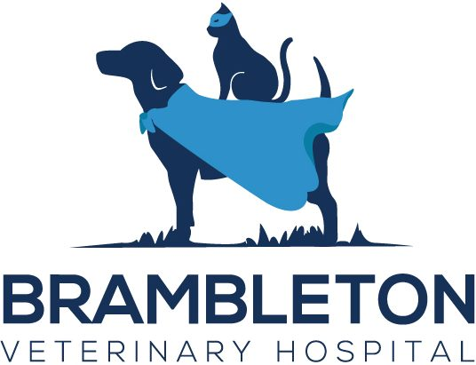 Brambleton Veterinary Hospital